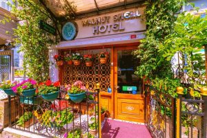 cheap-hotels-in-sultanahmet-wallnut-shell-hotel