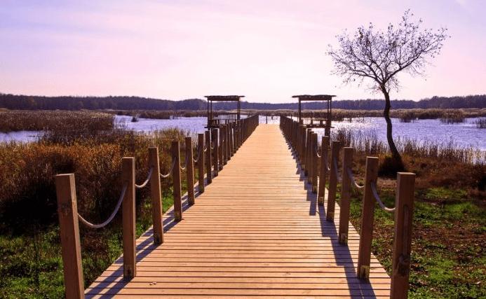 camping-sites-in-turkey-danamandira